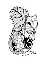 intricate squirrel coloring page favecrafts com
