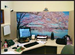pretty a color scheme for your cubile decor with office cubicle