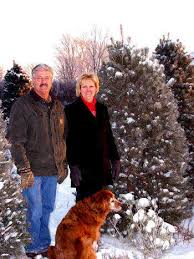 local news oh tannenbaum christmas tree business focuses on