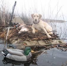 Duck Boat Blind Pictures Gear U2013 Rich Fletcher U0027s Blog