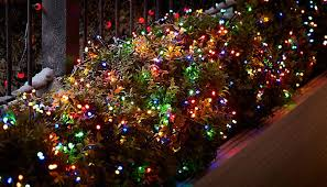 how to put lights on a tree outdoors how to hang outdoor christmas lights ideas advice diy at b q