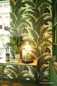 plante verte dans une chambre support plante archives le déco de mlc
