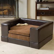 Cushy Sleeper Sofa Sofa Sleeper Awesome Cushy Sleeper Sofa Hd Wallpaper Pictures