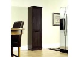 sauder homeplus basic storage cabinet dakota oak sauder homeplus 35 storage cabinet color dakota oak house of designs