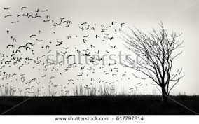 graphic image flock birds flying away stock photo 617797814