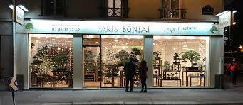 Boutique Japonaise Paris Paris Bonsaï Bienvenue