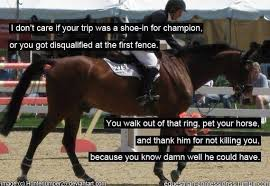 Horse Riding Meme - equestrian memes home facebook