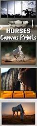 best 25 horse wall art ideas on pinterest horse paintings