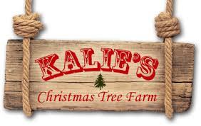 kalie u0027s christmas tree farm shickshinny pa 18655