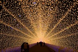 one of japan s best winter illuminations at nabana no sato