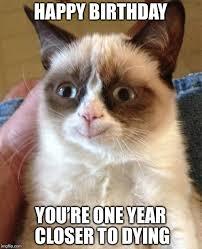 Cat Happy Birthday Meme - grumpy cat happy meme imgflip