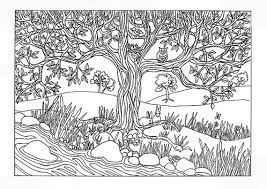 pretty design coloring pages for adults nature 8 fresh decoration
