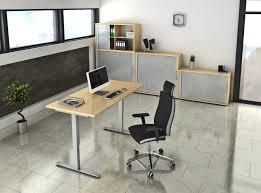 Schreibtisch 55 Cm Tief Elektrisch Höhenverstellbarer Schreibtisch 120 X 80 Cm