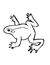 coloring pages picture of a frog to color frog picture colour