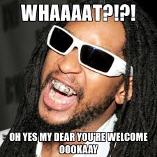 Oh Yes Meme - whaaaat oh yes my dear you re welcome oookaay lil jon meme