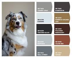 305 best den remodel craftsman to modern images on pinterest