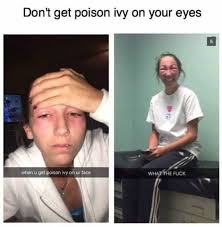 How To Make A Meme Face - dopl3r com memes dont get poison ivy on your eyes when u get
