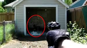 5 strangest discoveries found in people u0027s backyards youtube