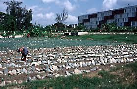 Raised Rock Garden Beds Organic Farming Feeds A Nation 46 Jul Aug 00
