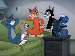 160 tom u0026 jerry cartoons images cartoons