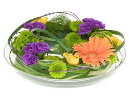 flowers for men flowers for men all about flowers our flora2000