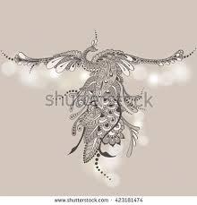 illustration flying bird vector peacock stock vector