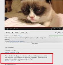 Grumpy Cat Has Died Youtube - 35 most hilarious youtube comments guaranteed to break your laughbox