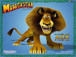 lion madagascar