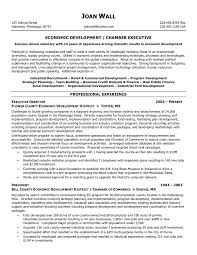 Best Resume Format For Managers by Executive Director Resume Samples Sample Resumes