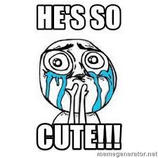 So Cute Meme - he s so cute crying meme generator