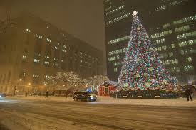 market commons tree lighting ceremony top 10 iconic christmas trees and their roots huffpost