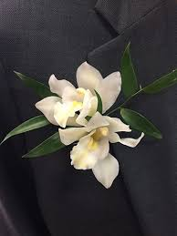 orchid boutonniere dendrobium orchid boutonniere with greens flowers