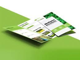 freebie nature tri fold brochure template free psd free psd