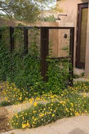 Trellis As Privacy Screen 724 Best Fences Screens Covers Images On Pinterest Privacy