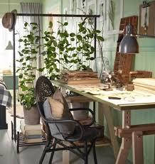 Ikea Plant Ideas by 884 Best Ikea Plants Images On Pinterest Plants Ikea Outdoor