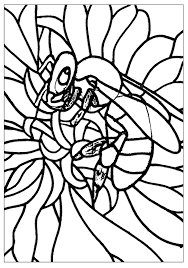 bee insects coloring pages for adults justcolor