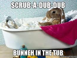 Dub Meme - scrub a dub dub bunneh in the tub make a meme