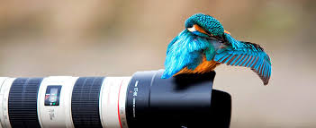 Digital Photography Digital Photography Digital Photography