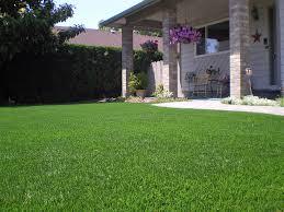 Patio Artificial Grass Fake Grass Carpet Tubac Arizona Paver Patio Landscaping Ideas