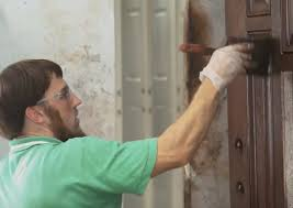 is it better to paint or stain your kitchen cabinets professionally painted doors stained front doors the