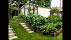 backyards fascinating small vegetable garden ideas uk basic