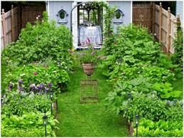Landscape Ideas For Small Backyard by Backyards Superb 17 Low Maintenance Landscaping Ideas Chris And