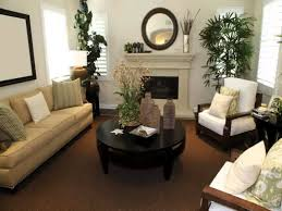 Home Decor With Plants by How To Decorate A Long Narrow Living Room Best 10 Narrow Living