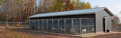 Dog Daycare Floor Plans by Northwoods Bird Dogs Kennel