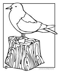 seagull coloring woo jr kids activities