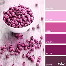 Pink Color Scheme Pink Color Palette Life In Color Pinterest Pink Color