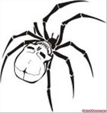 Skull Viewer Skull Spider Tattoo Drawing Tattoo Viewer Com