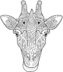 giraffe coloring colorpagesforadults adultcoloringpages