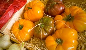 free images fruit food produce pumpkin gourd vegetables