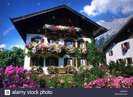 austria austrian farm flowers house chalet countryside flower